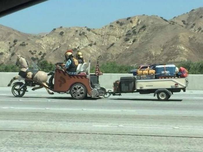 Ситуации на дороге, которые удивление, но и безудержный смех (17 фото)