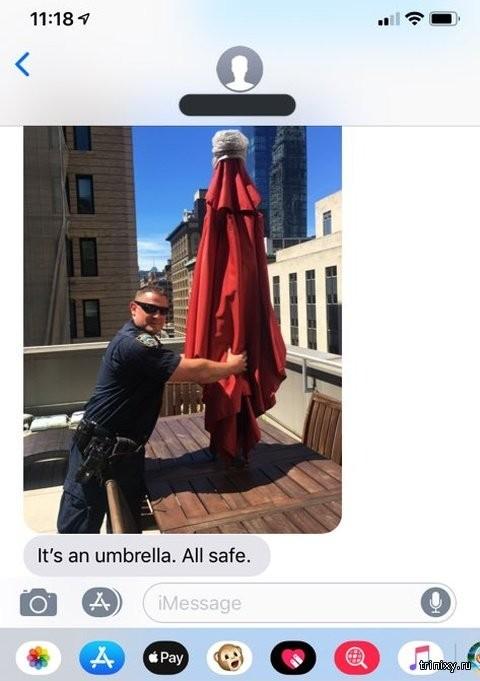 """Американка вызвала полицию, когда увидела """"служанку"""" на крыше (4 фото)"""