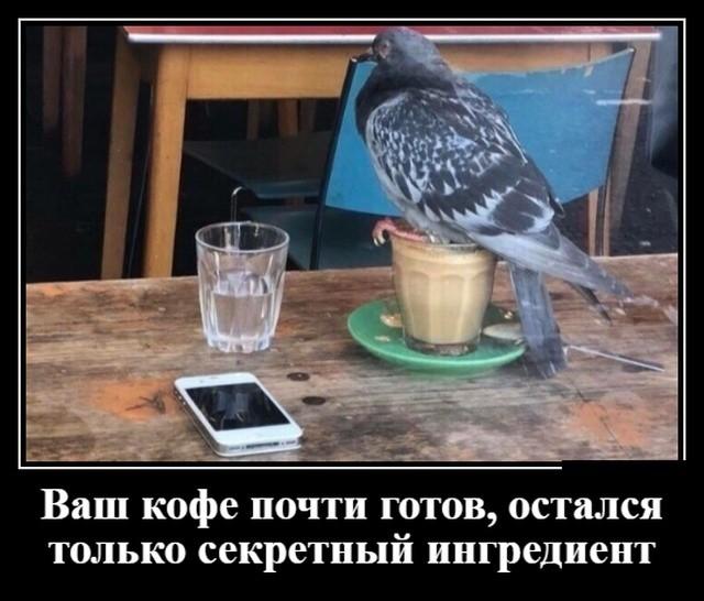 Демотиваторы (30 фото) 24.05.2019