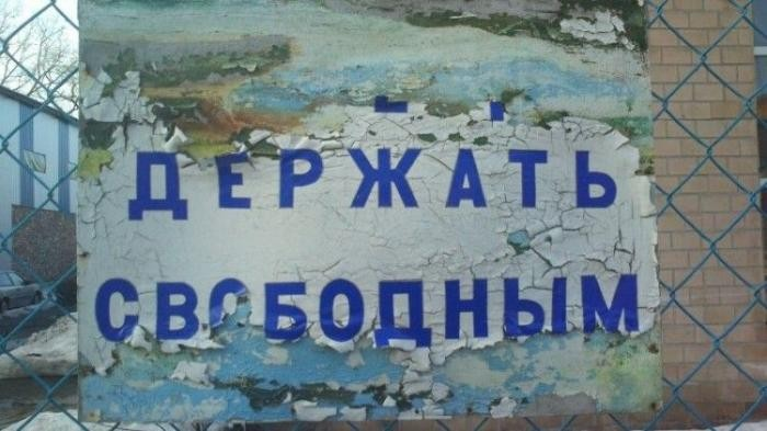 Прикольные надписи и маразмы (31 фото)