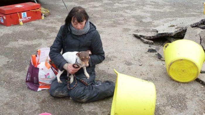 Спасение собаки, застрявшей в трубе (6 фото)