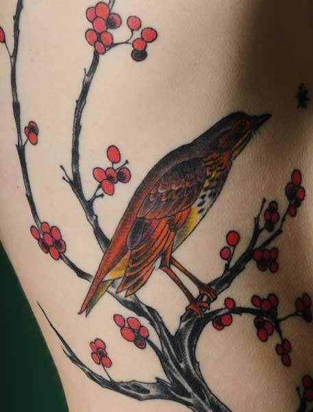 Какую ягоду клюет птица (4 фото)