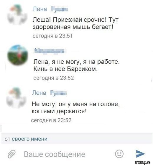 Комментарии и юмор из социальных сетей (25 скриншотов)