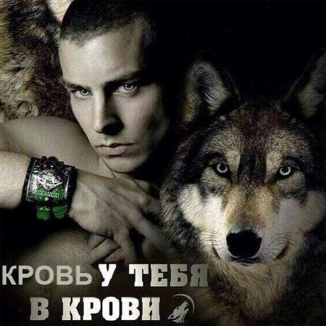 """""""Пацанская народная мудрость"""" и цитаты про волков (35 картинок)"""