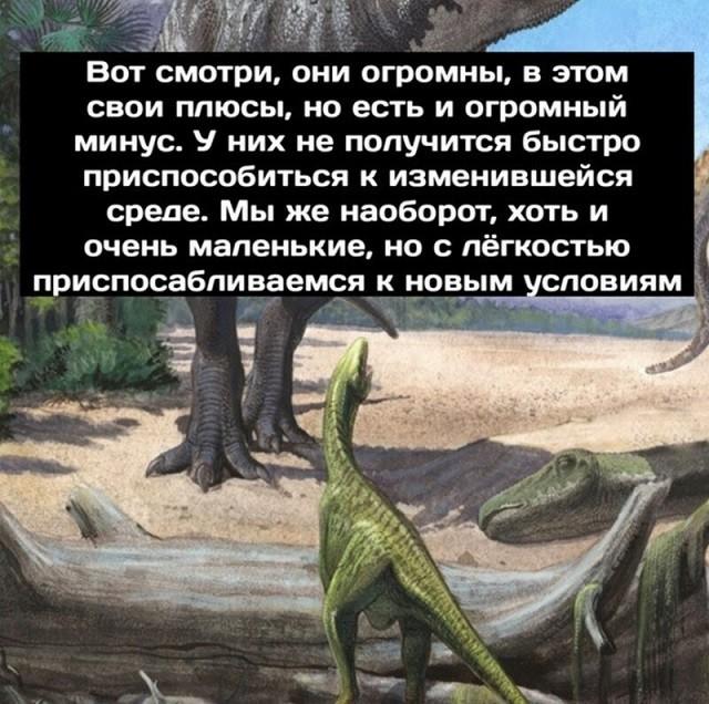 Минутка размышлений о приспособляемости от динозавров (9 картинок)