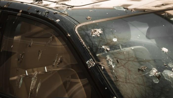 Простые способы уберечь автомобиль от палящего солнца летом (5 фото)