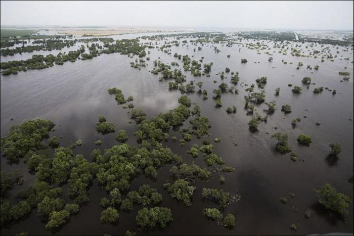 Река Амур спустя 5 лет (9 фото)