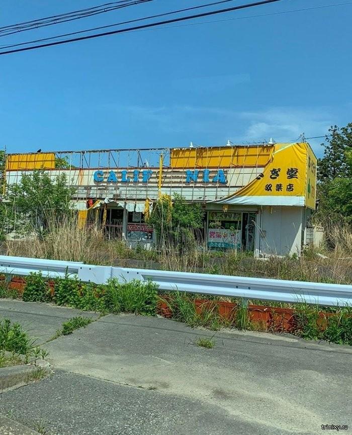 Зона отчуждения в Фукусиме как сейчас выглядит город-призрак (13 фото)