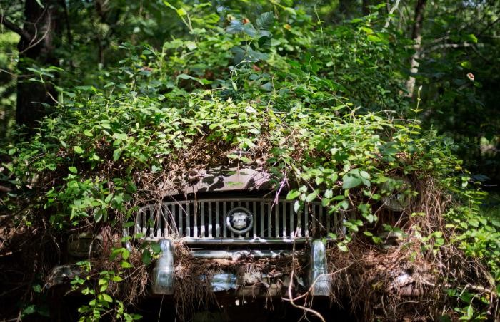 Город заброшенных автомобилей (17 фото)