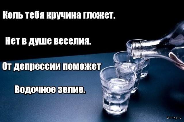 Алкогольные шутки (30 фото)