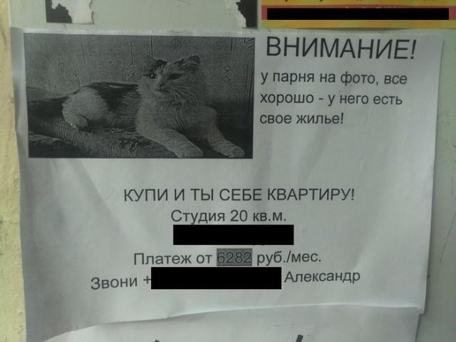 Подборка прикольных фото (64 фото) 19.06.2019
