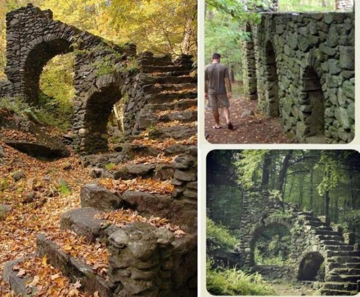 Таинственные лестницы, затерянные в лесных дебрях (6 фото)