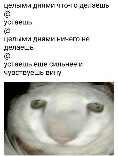 Подборка прикольных фото (60 фото) 20.06.2019