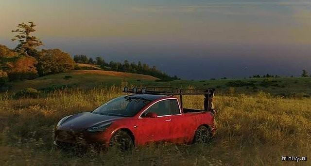 Tesla пока не производит пикапы, девушка решила это изменить (10 фото)