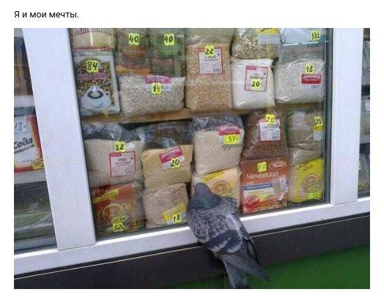 Нестандартный юмор (30 фото)