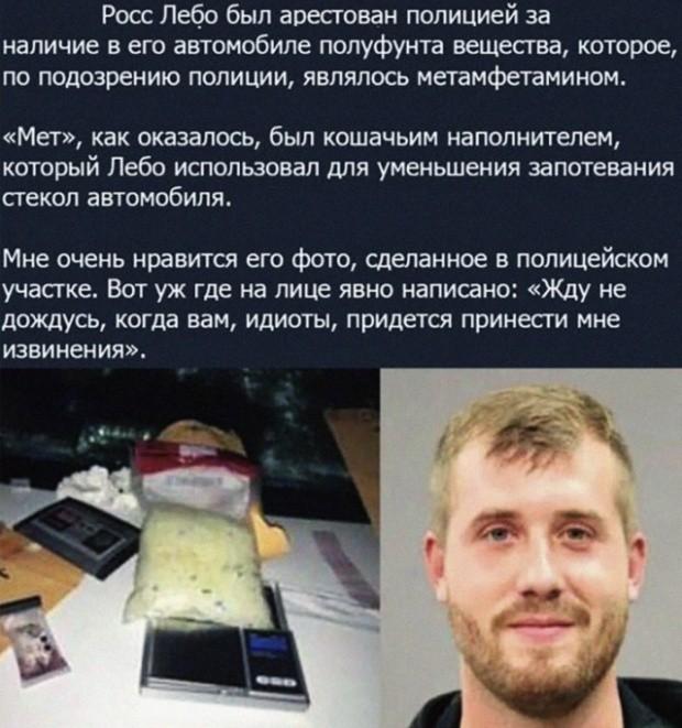 Подборка прикольных фото (63 фото) 27.06.2019