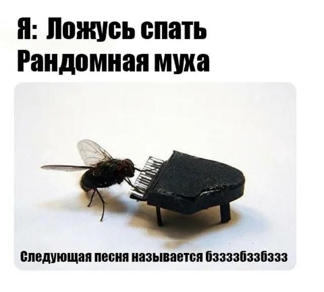Подборка прикольных фото (60 фото) 28.06.2019