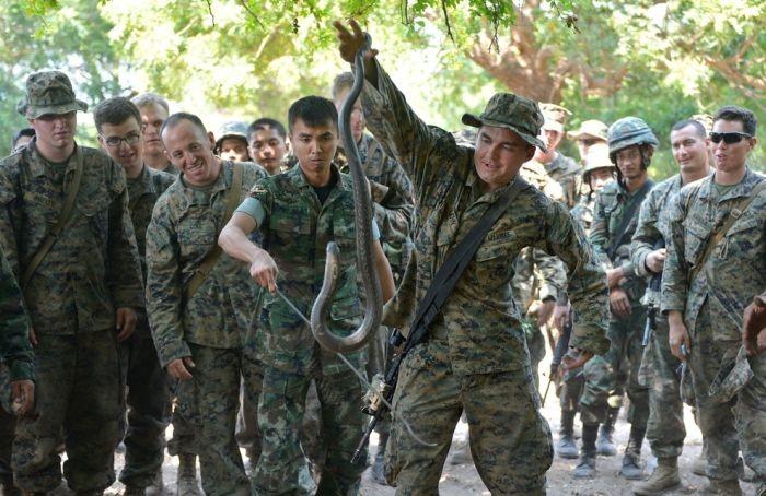 Учения по выживанию морских пехотинцев (10 фото)