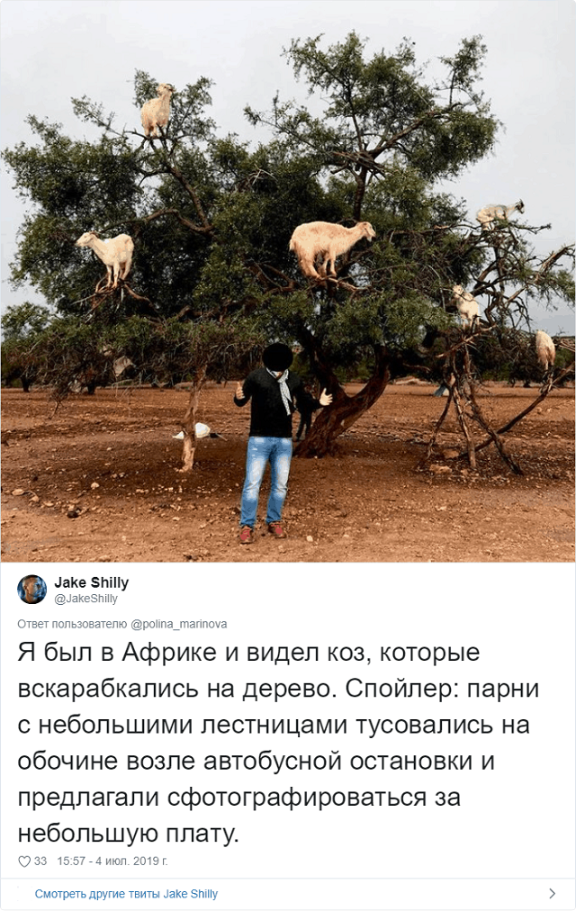 """И вновь """"инстаграмщики"""" доказали, что им нельзя доверять (15 фото)"""