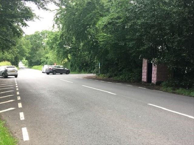В городе Веллингтон заметили очень странную остановку (4 фото)