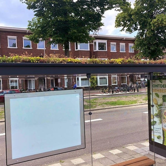 Как автобусные остановки в Нидерландах помогают спасти пчел (4 фото)