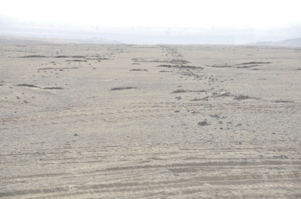 В Перу обнаружены линии из камней, выровненные по Солнцу (7 фото)