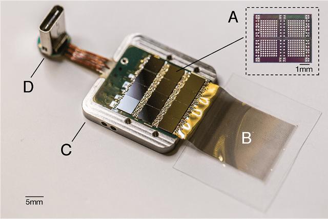 Стартап Илона Маска представил нейротехнологический проект (7 фото)