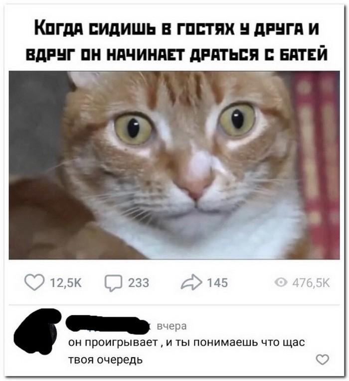 Скриншоты из социальных сетей (56 фото)