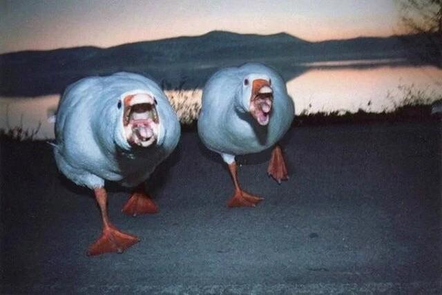 Странные и пугающие фотографии (28 фото)
