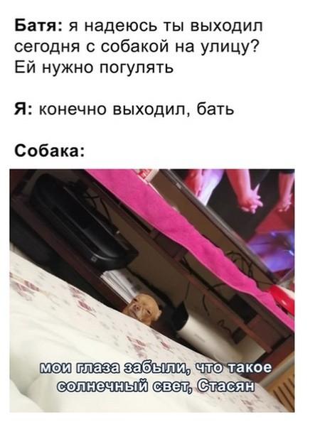 Подборка прикольных фото (61 фото) 31.07.2019