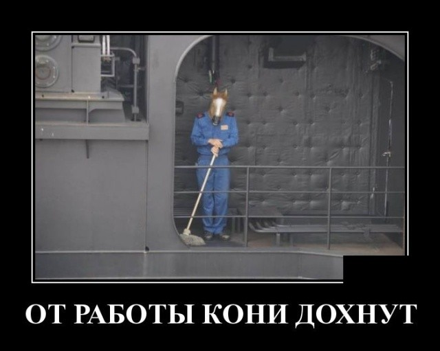 Демотиваторы (30 фото) 05.08.2019