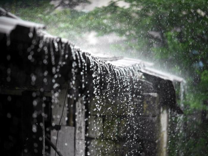Самая влажная точка Земли (19 фото)