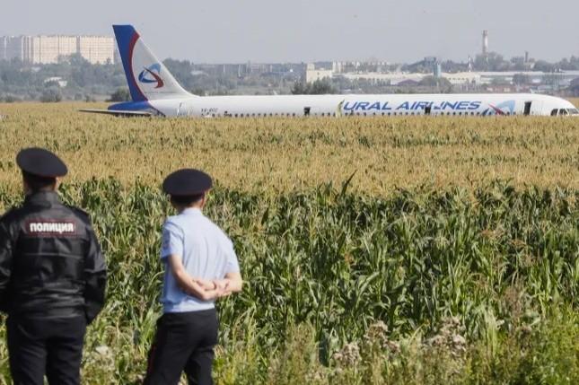 Самолет совершил экстренную посадку в поле в Подмосковье (5 фото)