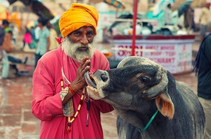 Правила путешествия по Индии (4 фото)
