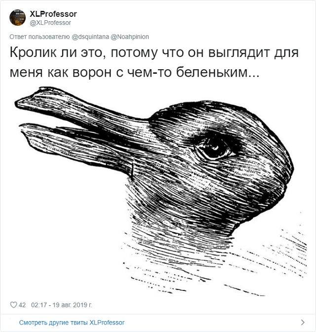Новый спор в Сети: кролик или ворона? (9 фото)