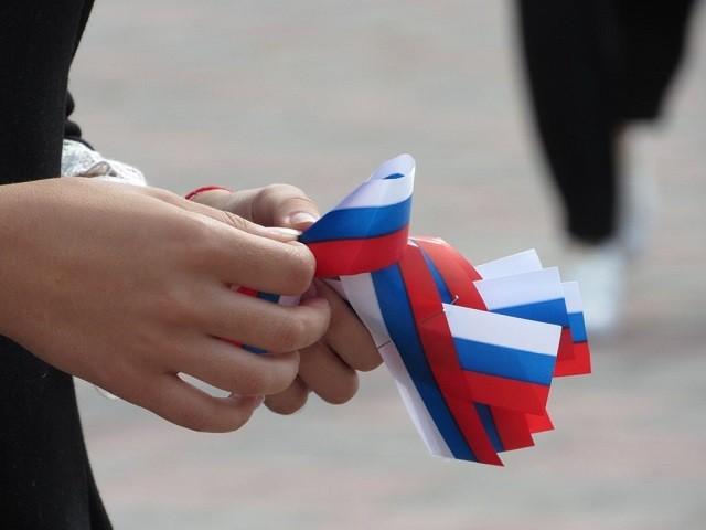 Половина респондентов не смогла описать российский флаг (2 фото)