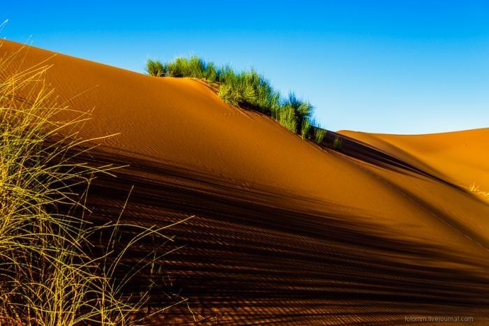 Прогулка по Сахаре (26 фото)