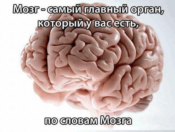 Загадки нашего разума (16 фото)