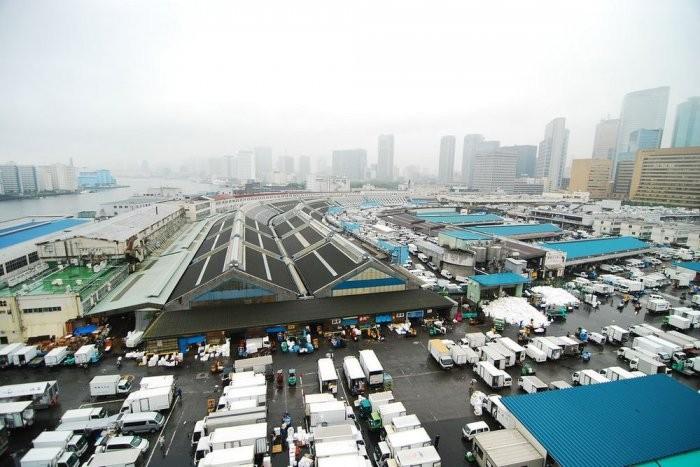 Самый большой в мире рыбный рынок (15 фото)