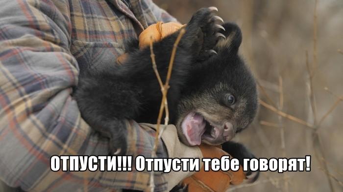 Подборка прикольных фото 03.09.2019 (64 фото)