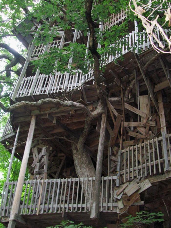Домик на дереве (33 фото)
