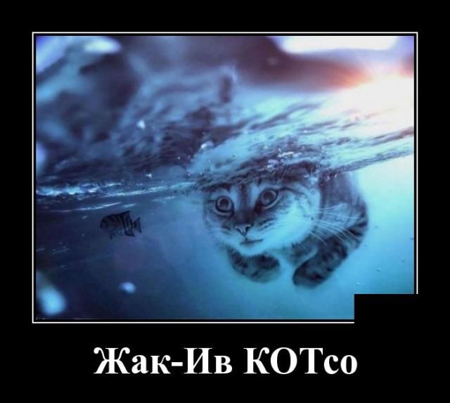 Демотиваторы 04.09.2019 (20 фото)