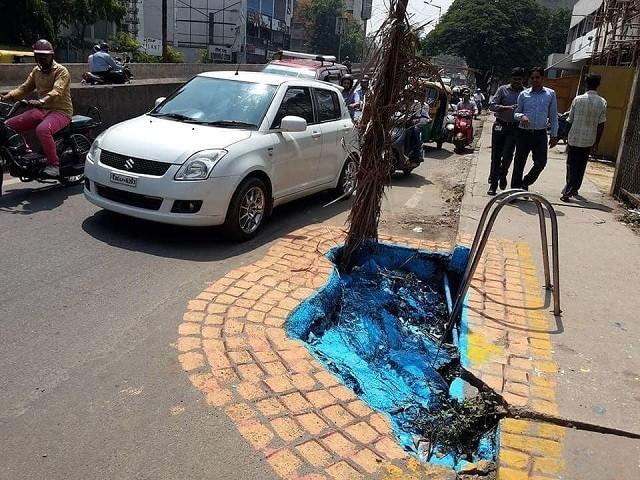 Дорожный арт в Индии (12 фото)