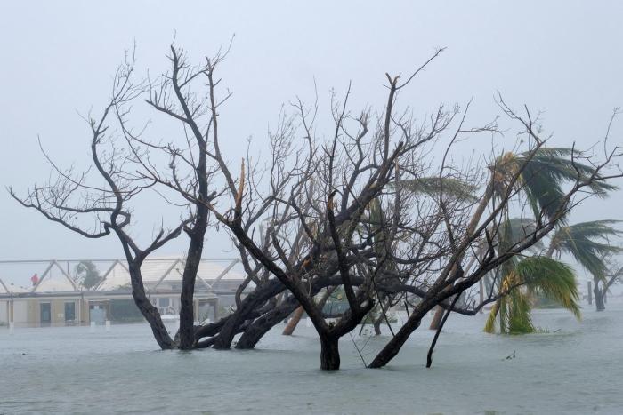 """Масштабные последствия урагана """"Дориан"""" (29 фото)"""