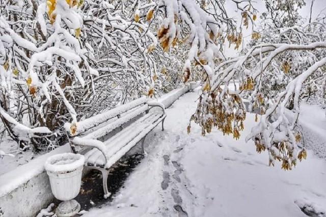 С первым снегом, Норильск! (11 фото)