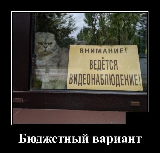 Демотиваторы 16.09.2019 (20 фото)