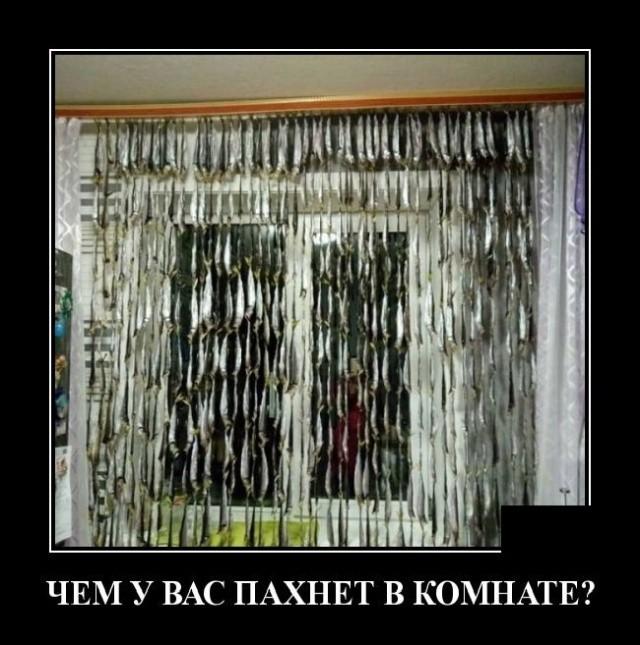 Демотиваторы 17.09.2019 (20 фото)