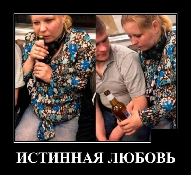 Демотиваторы 19.09.2019 (20 фото)