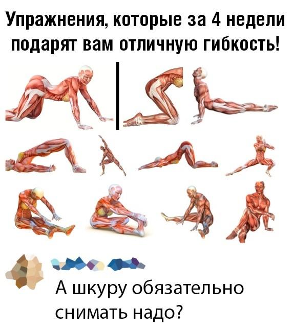 Подборка прикольных фото 23.09.2019 (61 фото)