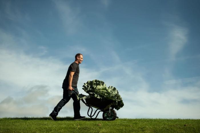 Конкурс гигантских овощей в фотографиях (13 фото)